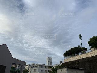 空,建物,屋外,雲,樹木,高層ビル
