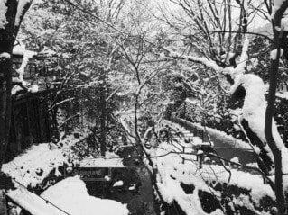 寺の横を流れる川に広がる銀世界の写真・画像素材[4140316]