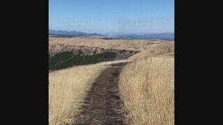 自然,風景,アウトドア,空,屋外,緑,雲,晴れ,青空,散歩,山,景色,草,丘,道,熊本,阿蘇,高原,草木,阿蘇山,眺め,大観峰,どこまでも続く,果てしない,山腹