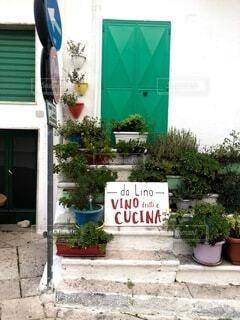 花,屋外,看板,標識,家,植木鉢,レストラン,地面,観葉植物,イタリア,草木
