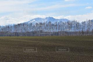 北海道の風景の写真・画像素材[880749]