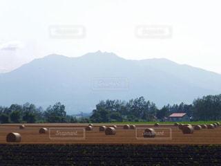 背景の山のフィールドの写真・画像素材[880827]