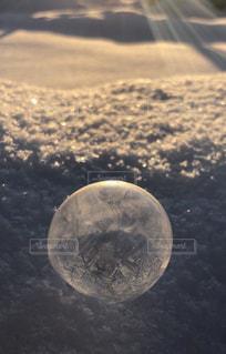 凍るしゃぼん玉の写真・画像素材[1732421]
