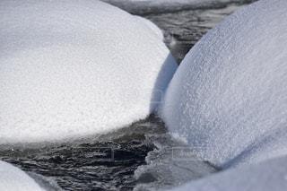 ふわもこ雪!の写真・画像素材[1735285]
