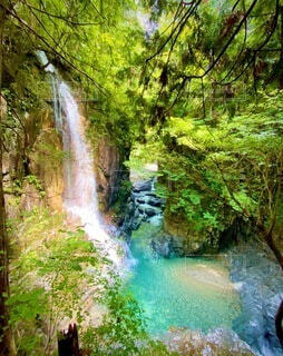 自然,風景,森林,屋外,青,水面,滝,観光,樹木,不動滝,観音,草木,付知峡,観音滝,つけち,つけちきょう,ふどうたき,ふどうだき,かんのん