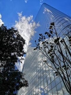 空,建物,屋外,東京,雲,青い空,反射,タワー,樹木,都会,高層ビル,浜離宮,汐留,アーキテクチャ,東京の空