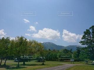 自然,風景,空,屋外,雲,山,草,樹木