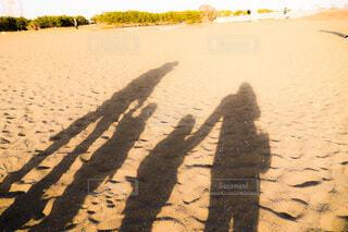 夕方の家族写真の写真・画像素材[4148306]