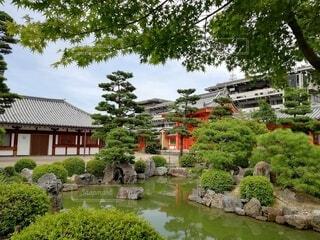 風景,空,屋外,水面,池,景色,樹木,日本庭園