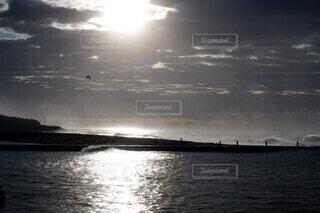 春海の写真・画像素材[4247541]