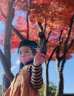 風景,秋,屋外,少女,樹木,人物,人,幼児,人間の顔