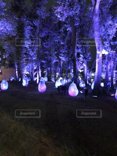 森の前の舞台に立つ人々のグループの写真・画像素材[4145049]