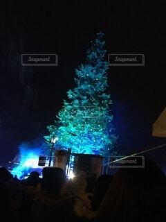 屋内,暗い,明るい,クリスマスツリー,点灯