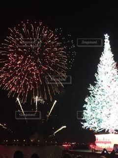 花火,クリスマス,ツリー,明るい,景観,草木,点灯