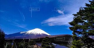 自然,風景,富士山,雪,屋外,雲,青空,山,樹木,飛行機雲