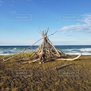 自然,海,空,木,屋外,雲,水面,オホーツク海