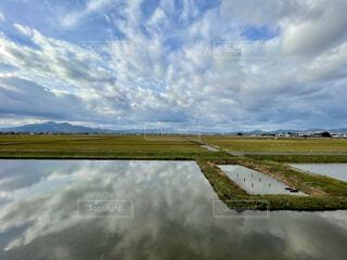 空,緑,雲,青,水,田舎,観光,美しい,旅行,旅,田んぼ,日本,田,稲,米,空気,山形,ひとり旅,1人旅