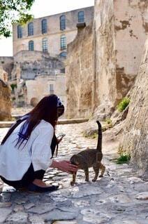 女性,猫,建物,動物,屋外,世界遺産,石畳,地面,マテーラ,洞窟住居