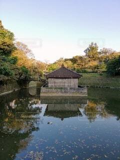 自然,風景,空,秋,屋外,水面,池,沖縄,景色,反射,樹木,草木,首里城公園