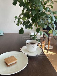 コーヒー,屋内,テーブル,マグカップ,食器,カップ,紅茶,観葉植物,コーヒー カップ