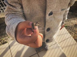 手,子供,人物,人,生き物,命