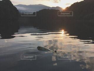 水の体に沈む夕日の写真・画像素材[4154248]