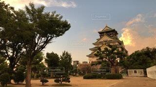 空,建物,夏,屋外,大阪,雲,夕焼け,城,お城,家,樹木,大阪城,草木