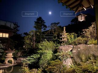 空,夜空,屋外,樹木,庭園,月,石,旅館,草木