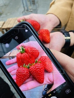 携帯電話を持っている人のクローズアップの写真・画像素材[4178865]