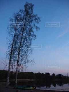 自然,空,屋外,雲,樹木,フィンランド