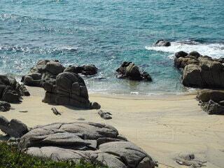 海と亀の写真・画像素材[4157463]