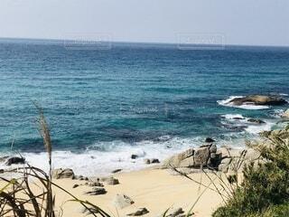 自然,風景,海,空,屋外,ビーチ,砂浜,水面,海岸,草木,海洋地形