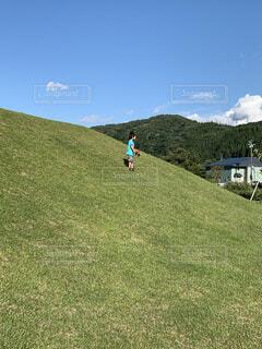 自然,空,屋外,緑,草原,山,景色,草