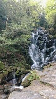 自然,屋外,水面,滝,樹木,岩