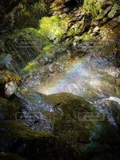 自然,風景,森林,屋外,森,緑,綺麗,水,虹,川,水面,日光,山,滝,樹木,岩,神秘的,マイナスイオン,水遊び,rainbow,water,秘密の場所,natural,天然,プリズム,豊,クリーク,天然プール,ストリーム,自然巡り