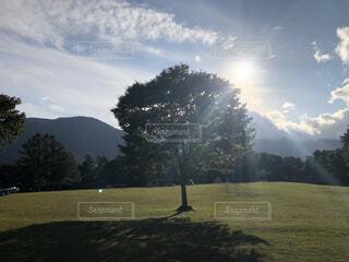 自然,風景,アウトドア,空,秋,屋外,太陽,雲,霧,山,景色,草,樹木,キャンプ,景観,草木