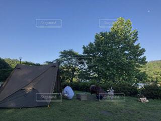 空,屋外,景色,男,草,樹木,人,キャンプ,テント,大きな木,景観,草木