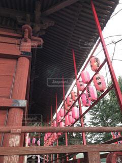 建物,屋外,神社,赤,黒,柱,寺,ちょうちん