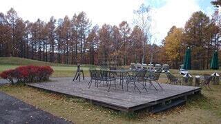 空,公園,屋外,ベンチ,草,樹木,遊び場