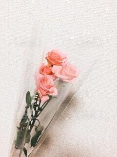 """""""日々に彩りを""""の写真・画像素材[4178141]"""