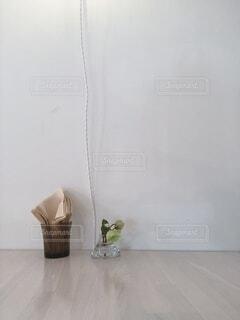 カフェ,屋内,花瓶,植木鉢,壁,観葉植物