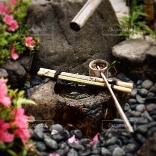 花,屋外,水,岩,石,柄杓,草木,ポット,ガーデン,左近太呂