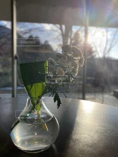 花,花瓶,フラワー,日差し,テーブル,休日,アレンジ