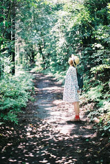 春の散歩道の写真・画像素材[4407658]