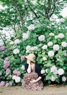 花園のクローズアップの写真・画像素材[4464159]