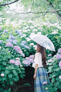 雨の中を歩いている人が傘を持っているの写真・画像素材[4560707]