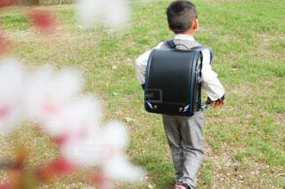 ランドセルを背負って歩く男の子の写真・画像素材[4306041]