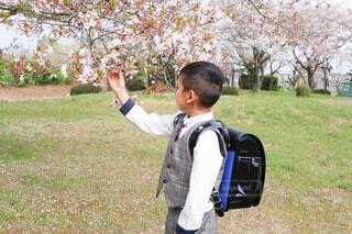春から新一年生の写真・画像素材[4317376]