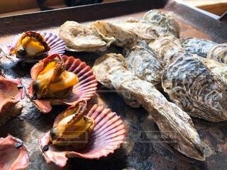 牡蠣とヒオウギ貝の写真・画像素材[4200098]
