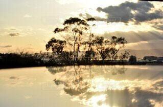 自然,風景,空,屋外,湖,太陽,雲,夕暮れ,反射,樹木